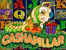 Играйте с гусеницей Cashapillar от Microgaming на реальные деньги